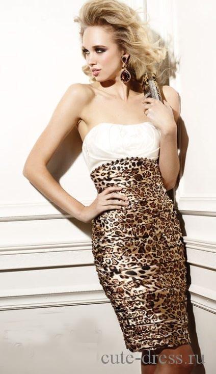 leopardovoe-plate-foto23