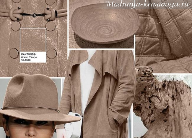 Модный коричневый по Pantone