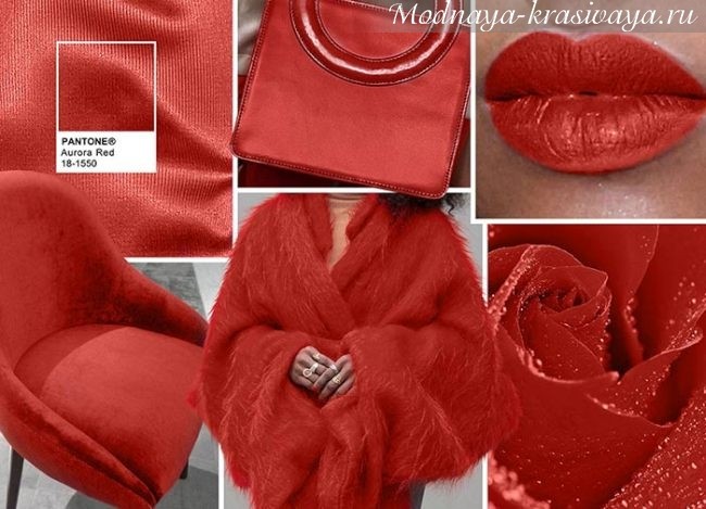 Модный цвет красный