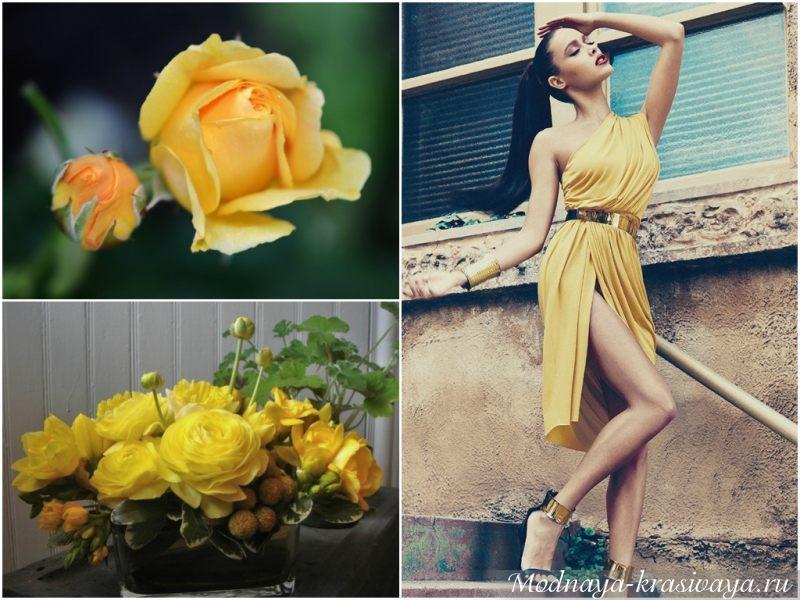 Красивые розы и красивая девушка